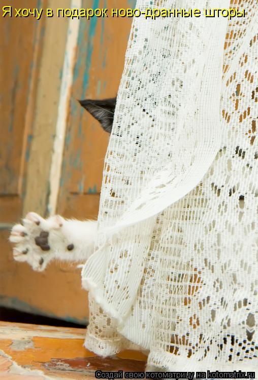 Котоматрица: Я хочу в подарок ново-дранные шторы