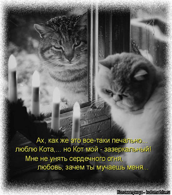 Котоматрица: Ах, как же это все-таки печально... люблю Кота,... но Кот мой - зазеркальный! Мне не унять сердечного огня, любовь, зачем ты мучаешь меня...
