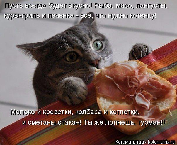 Котоматрица: Пусть всегда будет вкусно! Рыба, мясо, лангусты, куры-гриль и печенка - все, что нужно котенку! Молоко и креветки, колбаса и котлетки, и сметан
