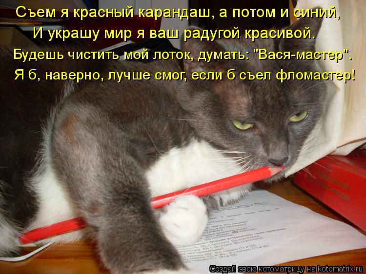 """Котоматрица: Съем я красный карандаш, а потом и синий, И украшу мир я ваш радугой красивой. Будешь чистить мой лоток, думать: """"Вася-мастер"""". Я б, наверно, луч"""