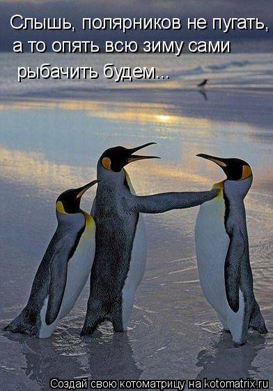 Котоматрица: Слышь, полярников не пугать, а то опять всю зиму сами рыбачить будем...