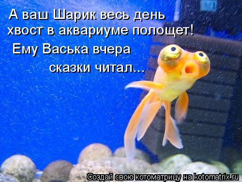 Котоматрица: А ваш Шарик весь день  хвост в аквариуме полощет! Ему Васька вчера  сказки читал...