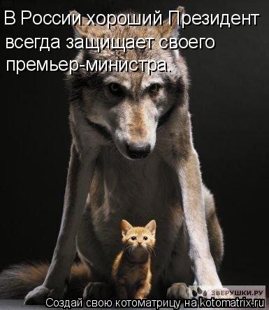 Котоматрица: В России хороший Президент всегда защищает своего премьер-министра.