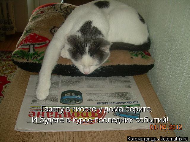 Котоматрица: И будете в курсе последних событий! Газету в киоске у дома берите.