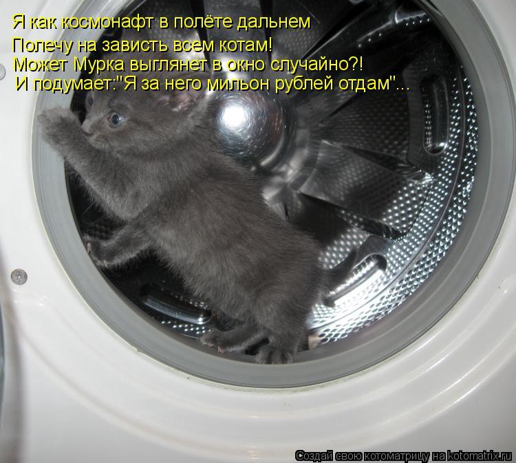 """Котоматрица: Я как космонафт в полёте дальнем Полечу на зависть всем котам! Может Мурка выглянет в окно случайно?! И подумает:""""Я за него мильон рублей отд"""