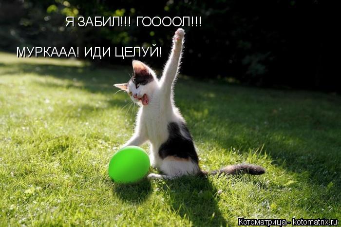 Котоматрица: Я ЗАБИЛ!!! ГООООЛ!!! МУРКААА! ИДИ ЦЕЛУЙ!
