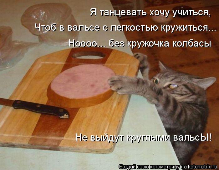Котоматрица: Я танцевать хочу учиться, Чтоб в вальсе с легкостью кружиться... Ноооо... без кружочка колбасы Не выйдут круглыми вальсЫ!