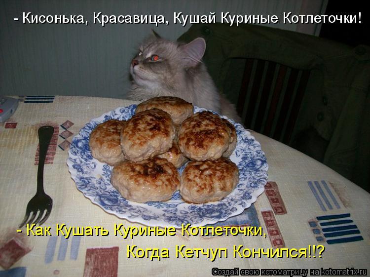 Котоматрица: - Кисонька, Красавица, Кушай Куриные Котлеточки!  - Как Кушать Куриные Котлеточки, Когда Кетчуп Кончился!!?