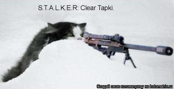 Котоматрица: S.T.A.L.K.E.R: Clear Tapki.