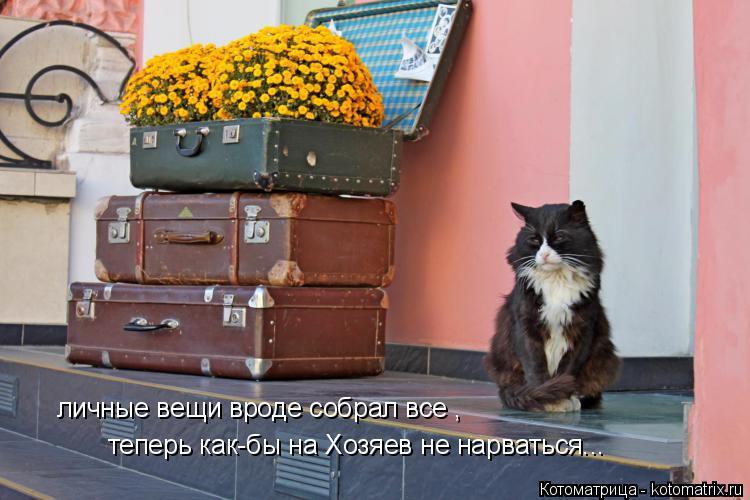 Котоматрица: личные вещи вроде собрал все , теперь как-бы на Хозяев не нарваться...