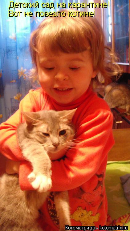Котоматрица: Детский сад на карантине! Вот не повезло котине!