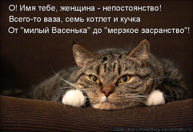 """Котоматрица: О! Имя тебе, женщина - непостоянство! Всего-то ваза, семь котлет и кучка От """"милый Васенька"""" до """"мерзкое засранство""""!"""