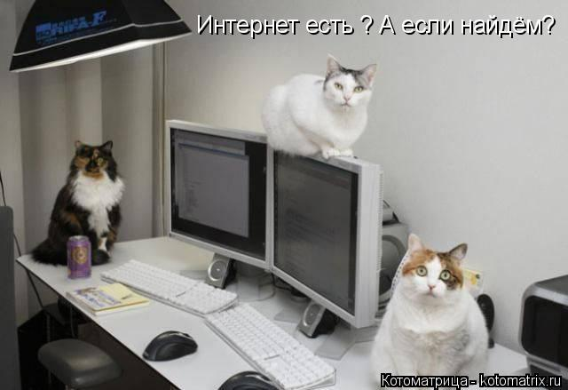 Котоматрица: Интернет есть ? А если найдём? Интернет есть ? А если найдём?