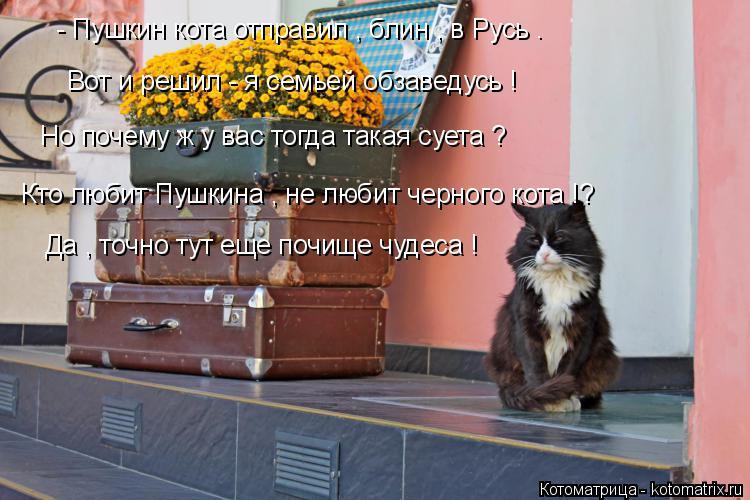 Котоматрица: - Пушкин кота отправил , блин , в Русь . Вот и решил - я семьей обзаведусь ! Но почему ж у вас тогда такая суета ? Кто любит Пушкина , не любит черн