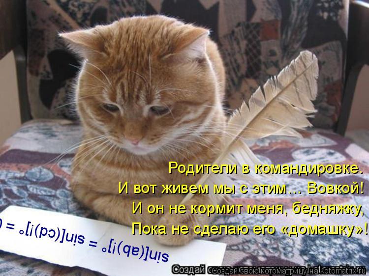Котоматрица: sin[(ab)!]° = sin[(cd)!]° = 0. Родители в командировке. И вот живем мы с этим… Вовкой! И он не кормит меня, бедняжку, Пока не сделаю его «домашку»!