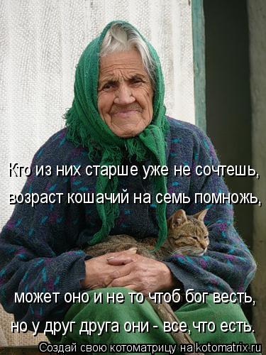 Котоматрица: Кто из них старше уже не сочтешь, возраст кошачий на семь помножь, может оно и не то чтоб бог весть, но у друг друга они - все,что есть.