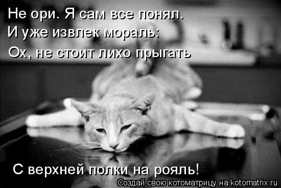 Котоматрица: Не ори. Я сам все понял. И уже извлек мораль: Ох, не стоит лихо прыгать С верхней полки на рояль!