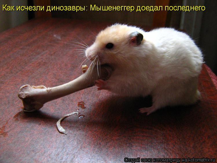 Котоматрица: Как исчезли динозавры: Мышенеггер доедал последнего