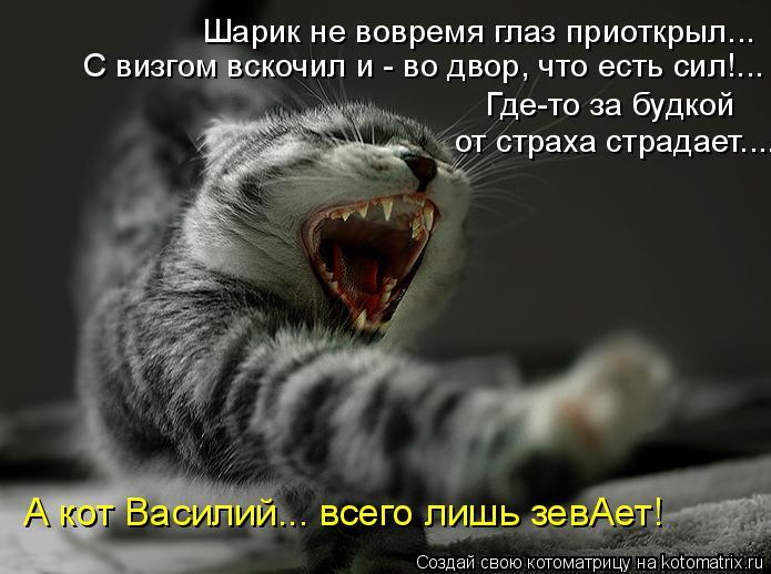 Котоматрица: Шарик не вовремя глаз приоткрыл... С визгом вскочил и - во двор, что есть сил!... Где-то за будкой  от страха страдает.... А кот Василий... всего лиш