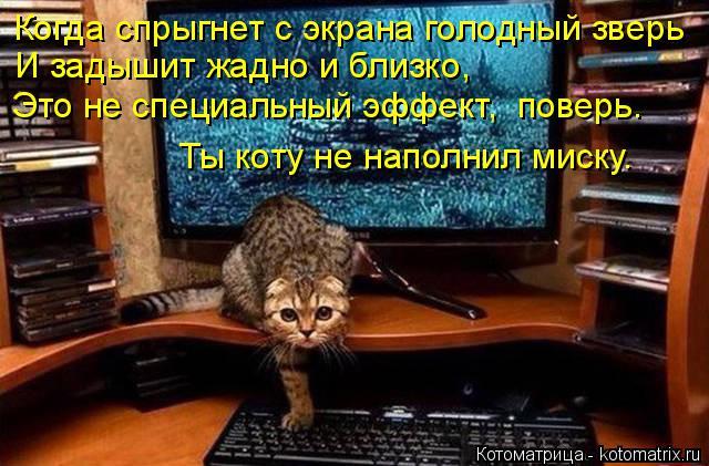 Котоматрица: Когда спрыгнет с экрана голодный зверь И задышит жадно и близко, Это не специальный эффект,  поверь. Ты коту не наполнил миску.