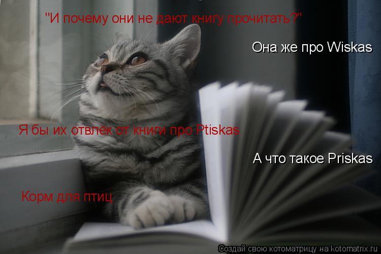 """Котоматрица: """"И почему они не дают книгу прочитать?"""" Она же про Wiskas Я бы их отвлёк от книги про Ptiskas А что такое Priskas Корм для птиц"""