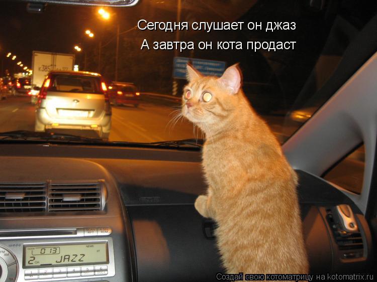 Котоматрица: А завтра он кота продаст Сегодня слушает он джаз