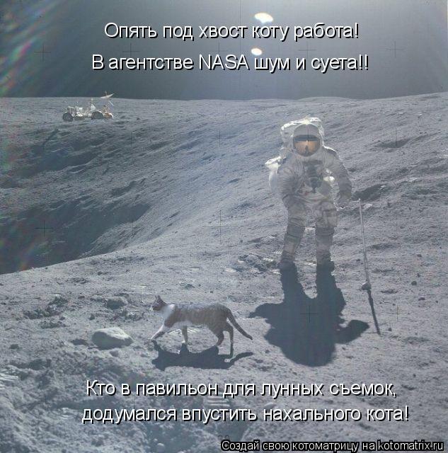 Котоматрица: Кто в павильон для лунных съемок, Опять под хвост коту работа! В агентстве NASA шум и суета!!  додумался впустить нахального кота!