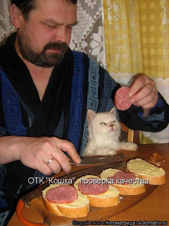 """Котоматрица: ОТК """"Кошка"""", проверка качества"""