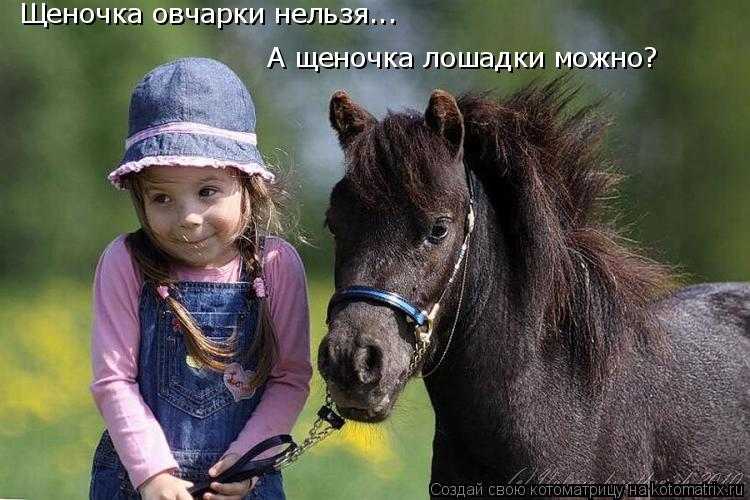 Котоматрица: Щеночка овчарки нельзя... А щеночка лошадки можно?