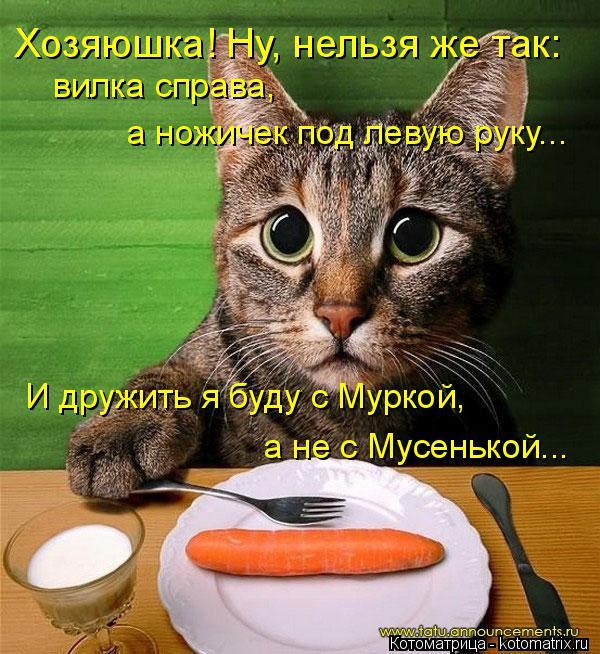Котоматрица: Хозяюшка! Ну, нельзя же так: вилка справа, а ножичек под левую руку...  И дружить я буду с Муркой, а не с Мусенькой...