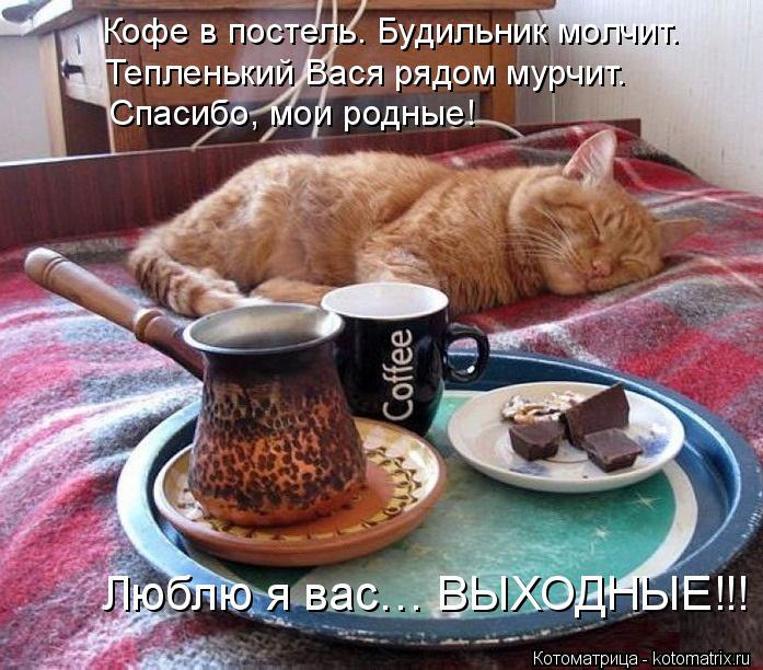 Котоматрица: Кофе в постель. Будильник молчит. Тепленький Вася рядом мурчит. Спасибо, мои родные! Люблю я вас… ВЫХОДНЫЕ!!!