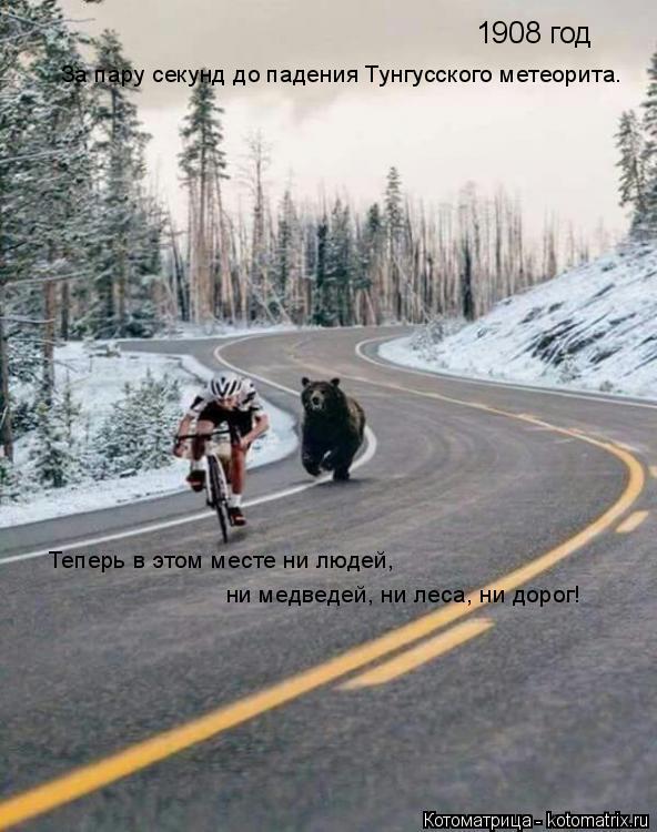 Котоматрица: 1908 год За пару секунд до падения Тунгусского метеорита. Теперь в этом месте ни людей,  ни медведей, ни леса, ни дорог!