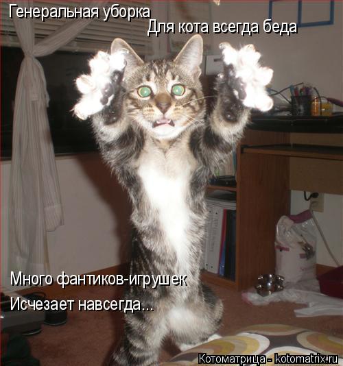 Котоматрица: Генеральная уборка Для кота всегда беда Много фантиков-игрушек Исчезает навсегда...