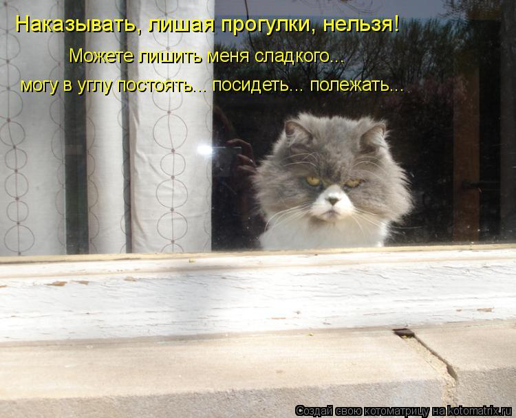 Котоматрица: Наказывать, лишая прогулки, нельзя! Можете лишить меня сладкого... могу в углу постоять... посидеть... полежать...