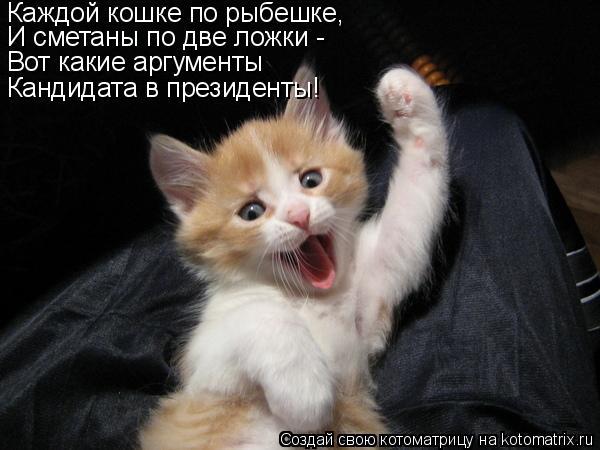 Котоматрица: Каждой кошке по рыбешке, И сметаны по две ложки - Вот какие аргументы Кандидата в президенты!