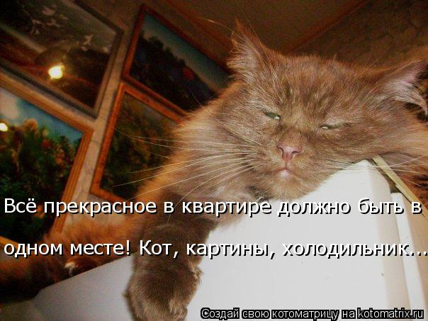 Котоматрица: одном месте! Кот, картины, холодильник... Всё прекрасное в квартире должно быть в