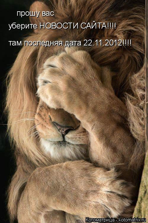 Котоматрица: прошу вас уберите НОВОСТИ САЙТА!!!! там последняя дата 22.11.2012!!!!