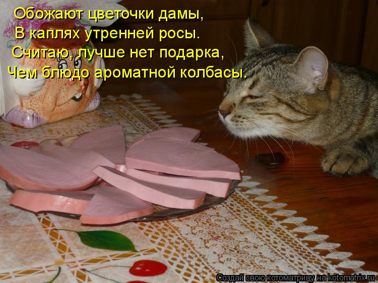 Котоматрица: Обожают цветочки дамы, В каплях утренней росы. Считаю, лучше нет подарка, Чем блюдо ароматной колбасы.