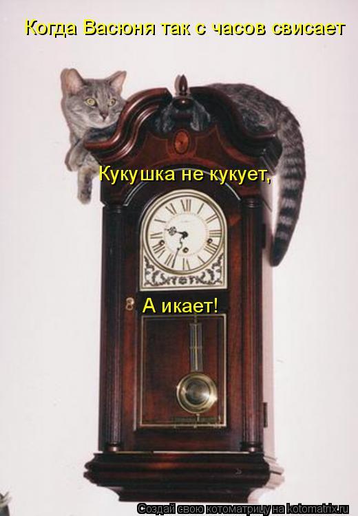 Котоматрица: Когда Васюня так с часов свисает Кукушка не кукует, А икает!