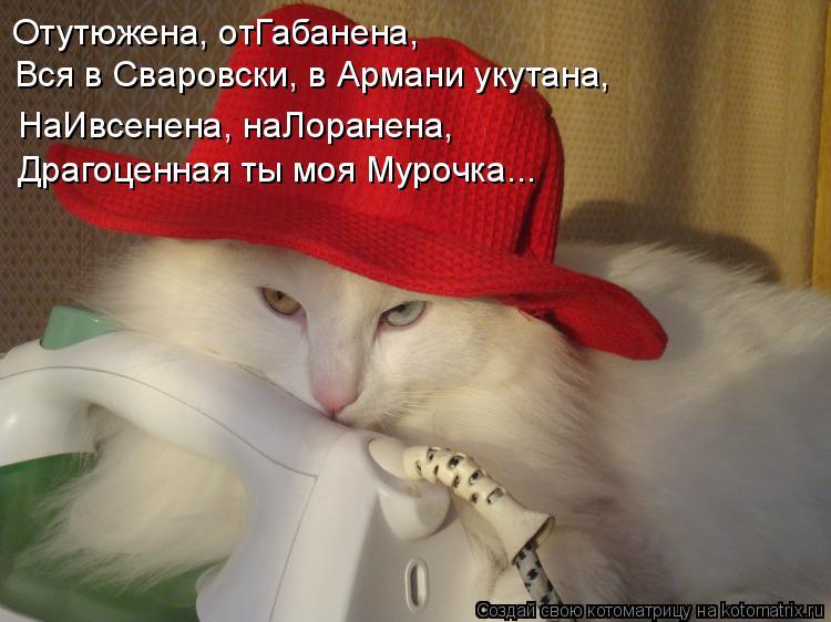 Котоматрица: Отутюжена, отГабанена, Вся в Сваровски, в Армани укутана, Драгоценная ты моя Мурочка... НаИвсенена, наЛоранена,