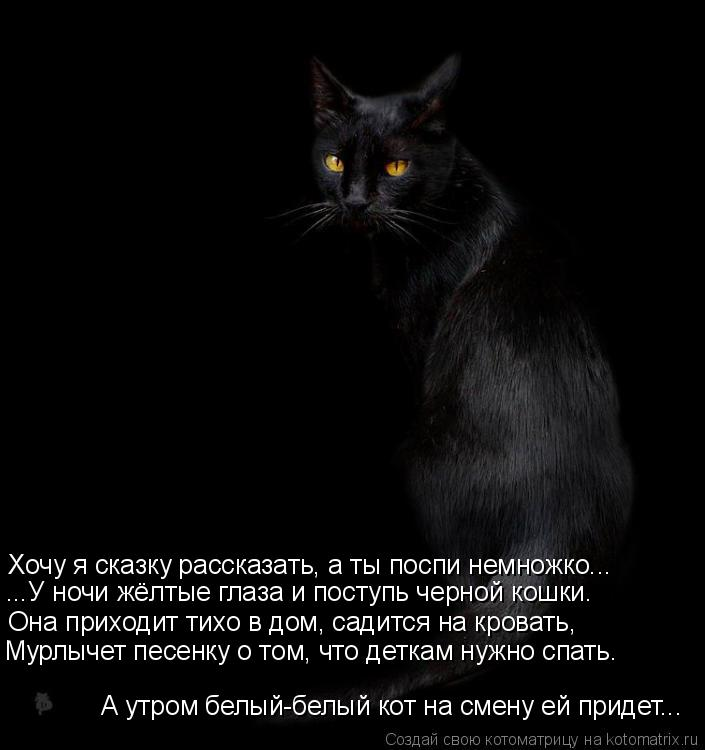 Котоматрица: А утром белый-белый кот на смену ей придет... Мурлычет песенку о том, что деткам нужно спать. Она приходит тихо в дом, садится на кровать, ...У н