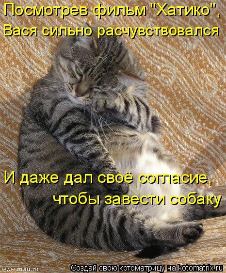 """Котоматрица: Посмотрев фильм """"Хатико"""", Вася сильно расчувствовался И даже дал своё согласие, чтобы завести собаку"""