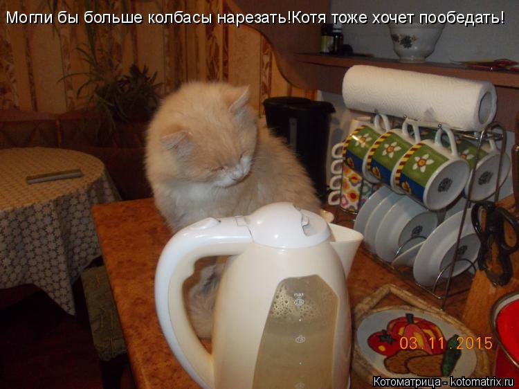 Котоматрица: Могли бы больше колбасы нарезать!Котя тоже хочет пообедать!