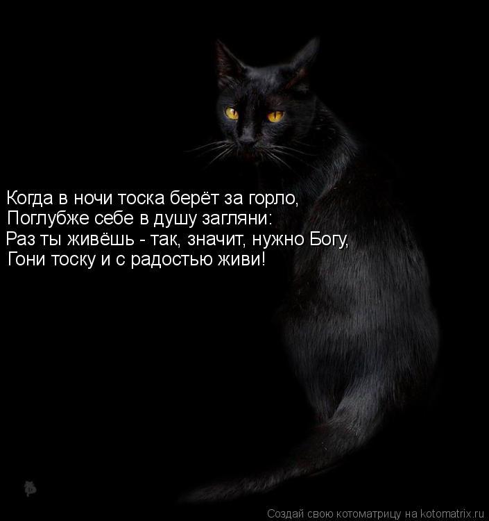 Котоматрица: Когда в ночи тоска берёт за горло, Поглубже себе в душу загляни: Раз ты живёшь - так, значит, нужно Богу, Гони тоску и с радостью живи!