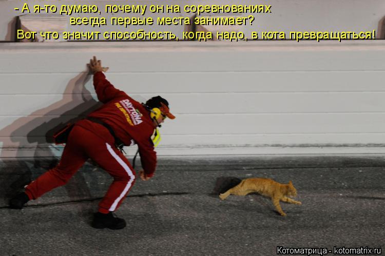 Котоматрица: - А я-то думаю, почему он на соревнованиях всегда первые места занимает? Вот что значит способность, когда надо, в кота превращаться!