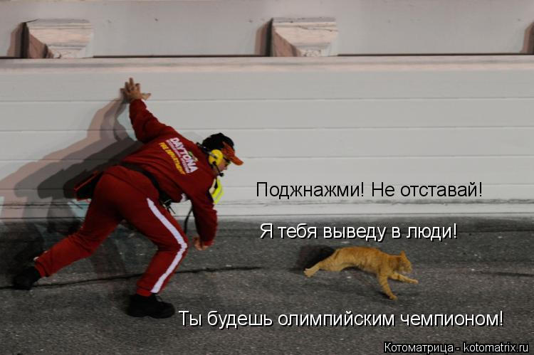 Котоматрица: Поджнажми! Не отставай! Я тебя выведу в люди! Ты будешь олимпийским чемпионом!