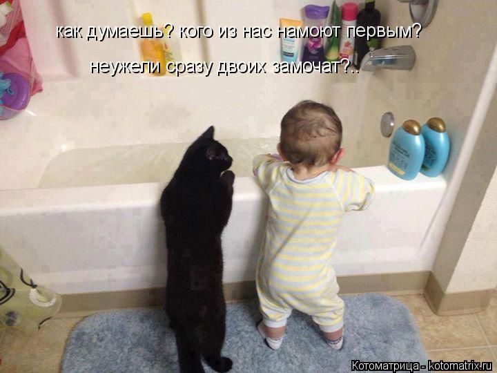 Котоматрица: как думаешь? кого из нас намоют первым? неужели сразу двоих замочат?..