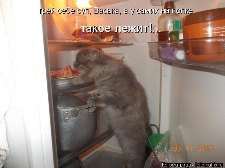 Котоматрица: грей себе суп, Васька, а у самих на полке такое лежит!...