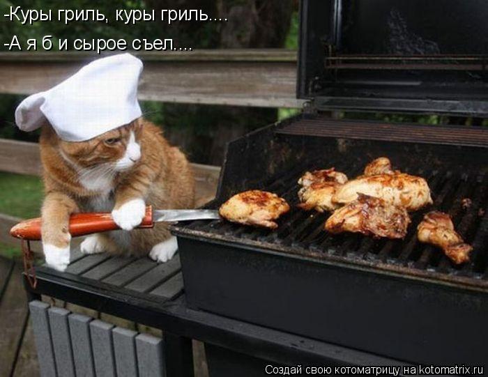Котоматрица: -Куры гриль, куры гриль.... -А я б и сырое съел....