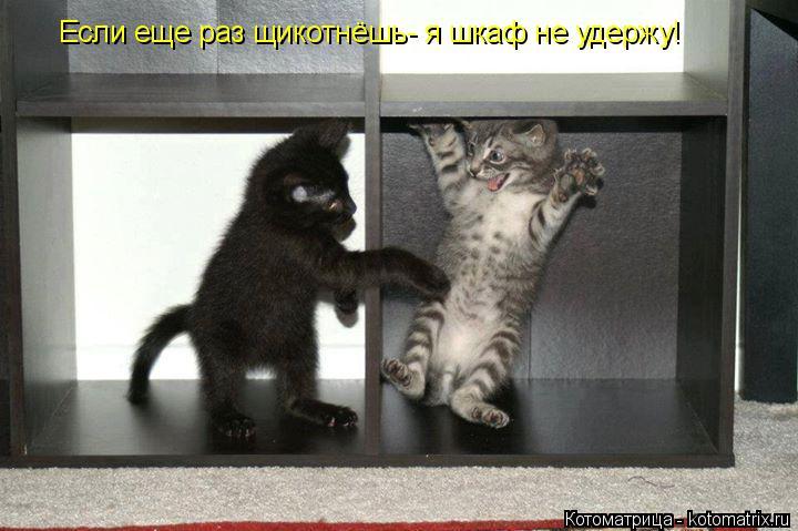 Котоматрица: Если еще раз щикотнёшь- я шкаф не удержу!